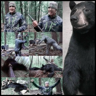 Bowmar hunting kills bear with spear