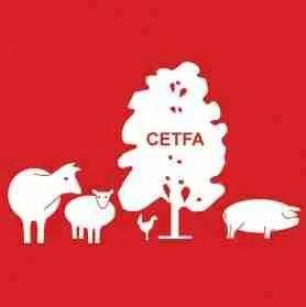 CEFTA Logo