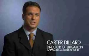 Carter Dillard