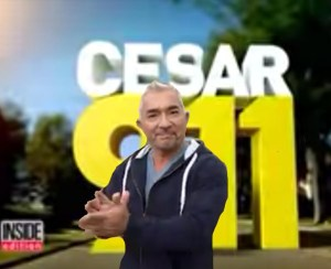 Cesar Millan leads applause for himself.