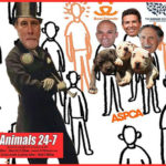 "Pit bulls, ""outliers"" & Humane Society of the U.S. prez Wayne Pacelle"