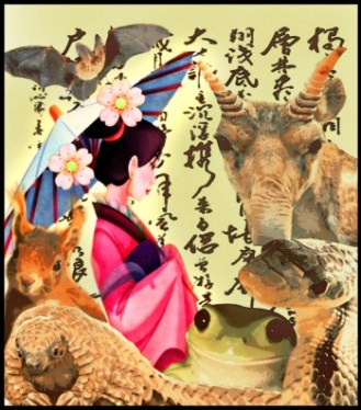 Chinese woman sitting with wildlife