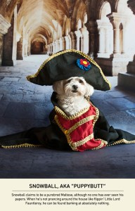 Snowball,  the dog who thinks he is Napoleon.  (Justin Page photo)