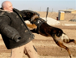 Department of Defense photo.