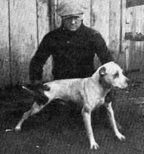 Dogfighter & pit bull breeder Earl Tudor.