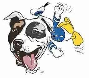 donald-dog