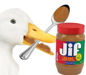 Duck eating peanut butter