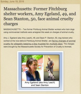 Four Legged Friends & Enemies report of Egeland/Stanton case.