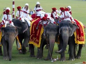 Female visitors to Jaipur play elephant polo. (www.VisitRajasthan.com)