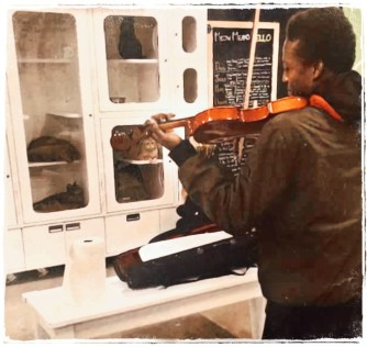 Elijah McClain plays violin to shelter cats