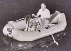 Erik Hendricks rescuing a dog from flooding.  (Pennsylvania SPCA photo)