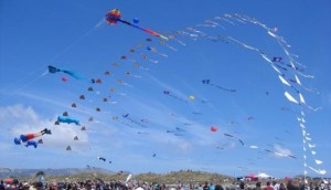 Makar Sankranti kite launch.