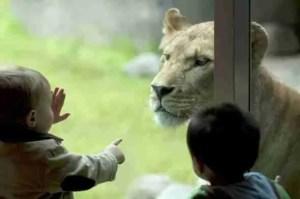 (Oregon Zoo photo)