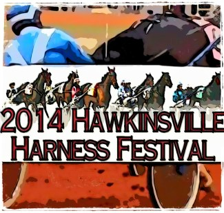 Harness racing in Hawkinsville, Georgia