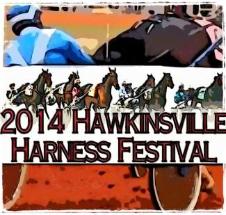 Harness racing in Hawkinsville, Georgia