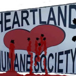 Heartless Humane Society raffles a rifle