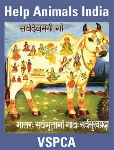 Help Animals India poster