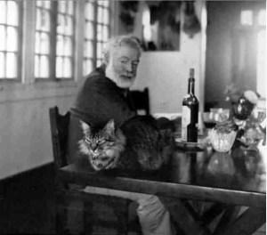 Hemingway, bottle, cat