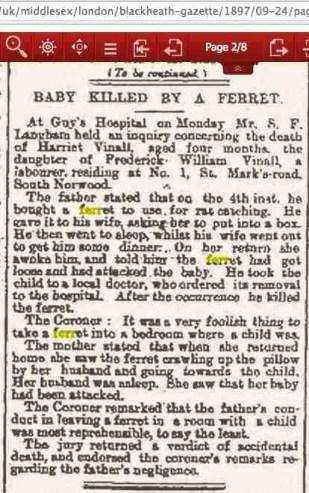London ferret fatality 1897
