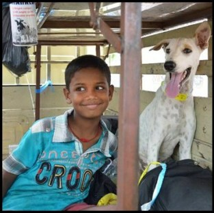 Boy with dog Mission Rabies