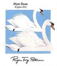 Zaire in 1985 issued a postage stamp using this Roger Tory Peterson painting of mute swans.