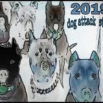 Pit bulls killed 33 of 46 U.S. victims of fatal dog attacks in 2019