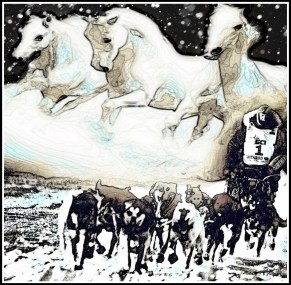 Iditarod dogs and horses