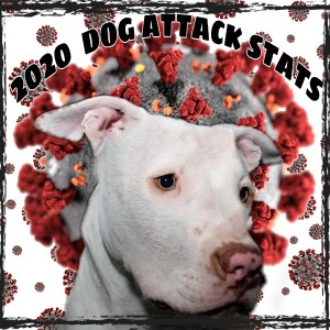 2020 dog attack stats with pit bull