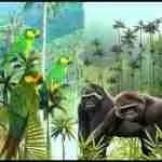 Murder along the equator: seven die defending parrots & gorillas