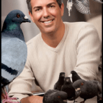 HSUS president Wayne Pacelle responds to Maryland pigeon shoot