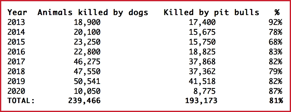 Dog on dog attacks 2020