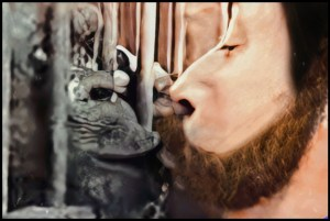 Wally Swett founder of Primarily Primates kisses Oliver the chimp