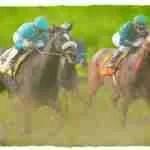 20 racehorses die in 10 weeks at Santa Anita Park––why?