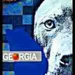 Georgia Supreme Court rules for pit bull attack victim
