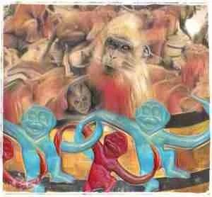 Macaques in a barrel monkeys