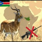 South Sudan bans hunting;  follows Kenya, with Chinese support