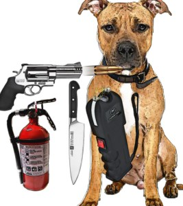 Pit bull collage with fire extinguisher, gun, knife,