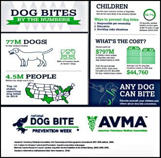 Dog Bite Awareness Week