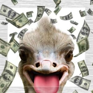 money ostrich