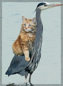 Cat rides a blue heron