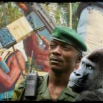 Guerrillas gun down 12 gorilla guards & five others in Virunga, DRC