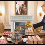 COVID-19:  Trump order reopening slaughterhouses was not about food
