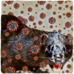 """""""That touch of mink"""" & COVID-19:  Dutch outbreak hints mink may be host"""