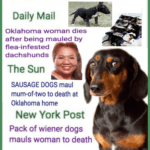 "How tabloids turned the pits who killed Tracy Garcia into ""dachshunds"""