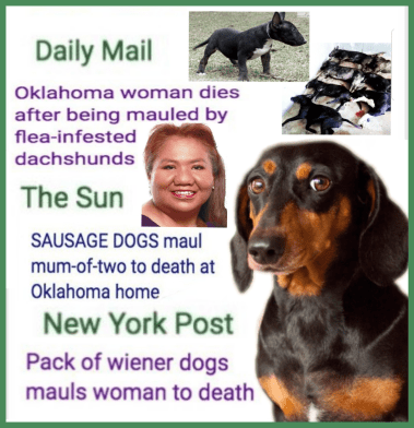"dda3e0edc40 How tabloids turned the pits who killed Tracy Garcia into ""dachshunds"""