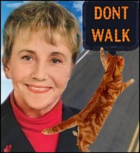 Dawn Danielson with kitty