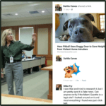 "Why did pit bull advocates amplify a ""fake news"" pit bull fatality?"
