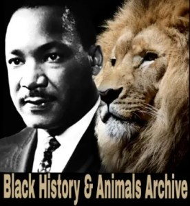 Martin Luther King and Lion