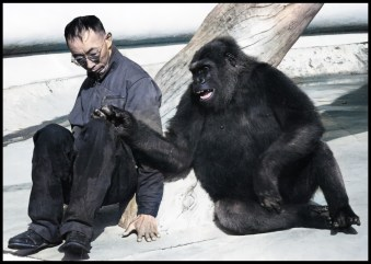 Carroll Soo-Hoo and gorilla friend.