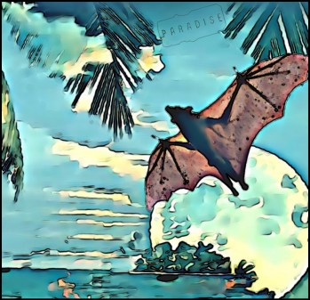 Bat flies through paradise